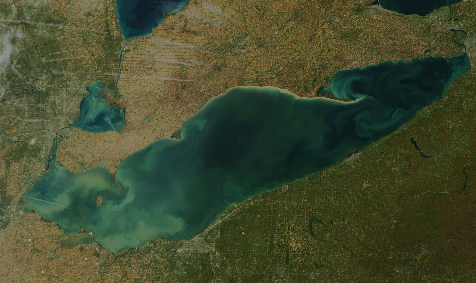 Algae in Lake Erie in 2015